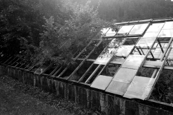 greenhouse03